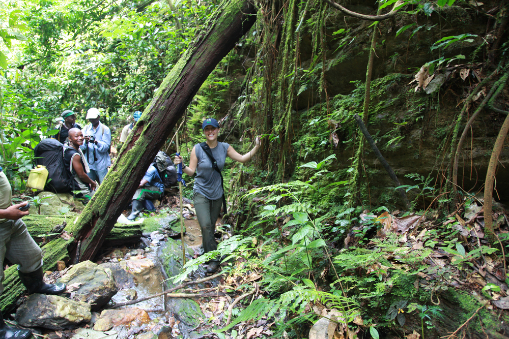 DRC Rainforest.jpg