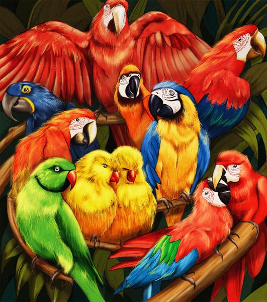 parrots_1024x1024_grande.jpg