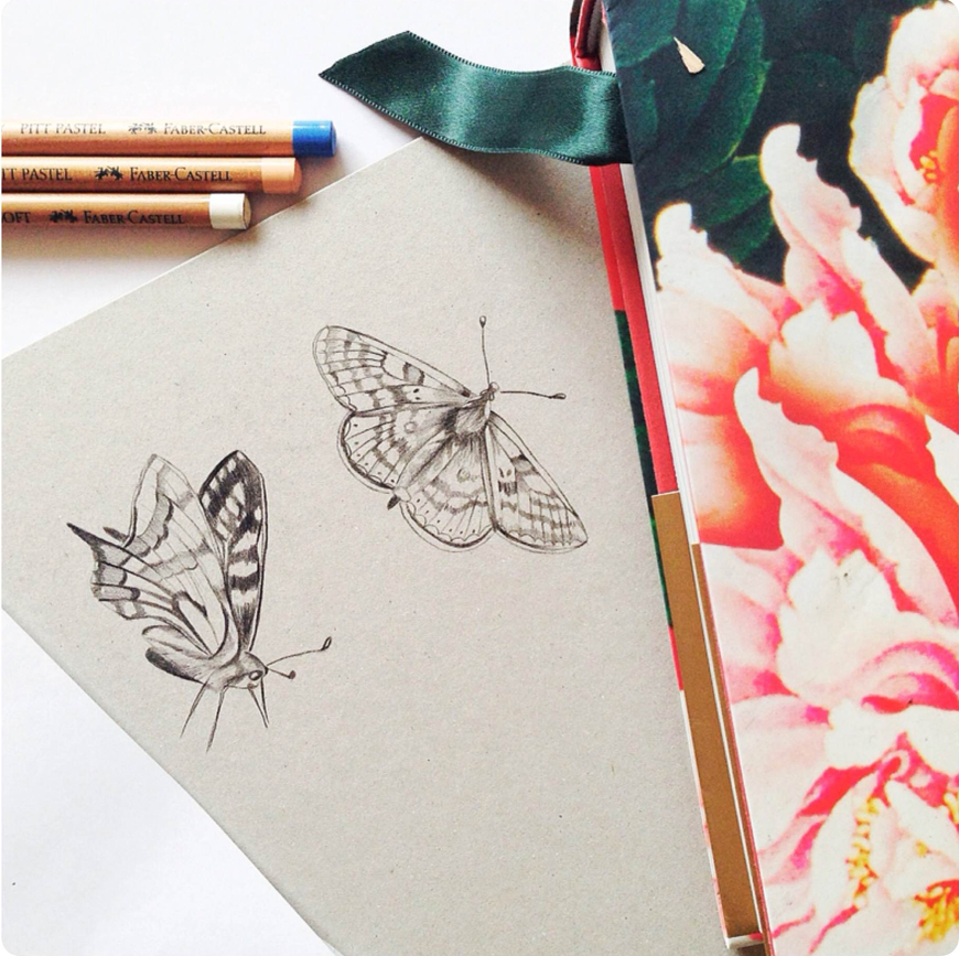 Kelly_thompson_art_illustration_drawing_butterflies_illustrator_blog.jpg