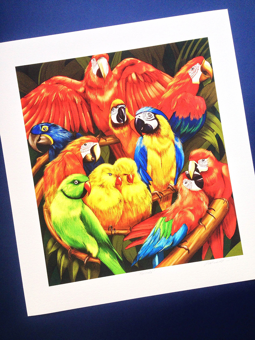 2_kelly_thompson_art_illustration_illustrator_blog_print_gold_medal_parrot.jpg