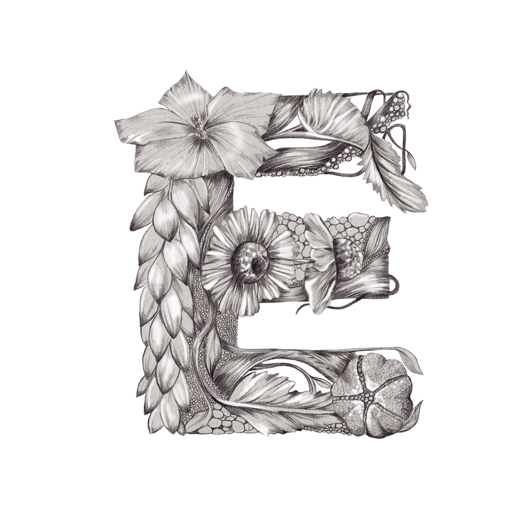 Kelly Thompson Illustrated floral typography www.kellythompsoncreative.com