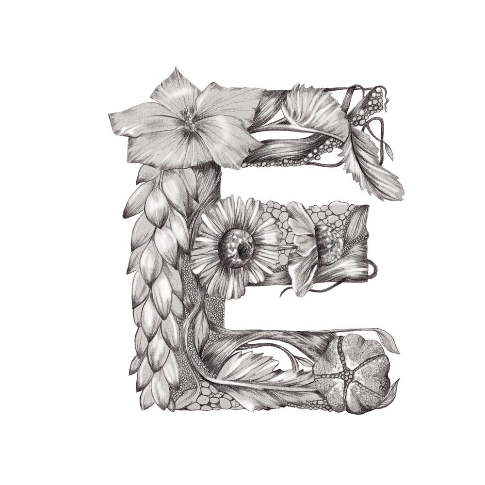 Kelly Thompson Illustrated floral typography www.kellythompsoncreative.com