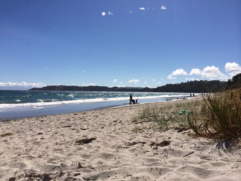 Best Things to do on Waiheke