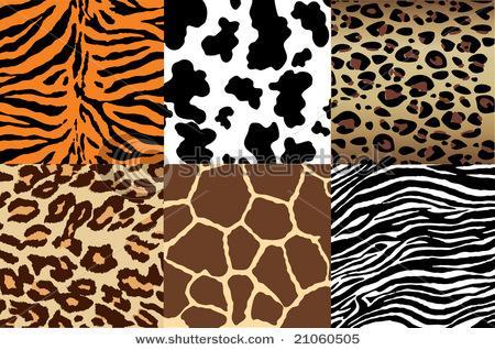 animalprint.jpg