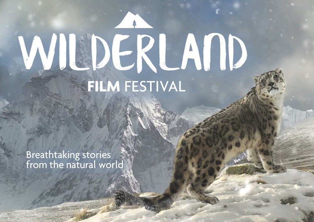 Wildernd Film Festival