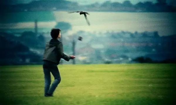 肯·洛奇名作《小孩与鹰》