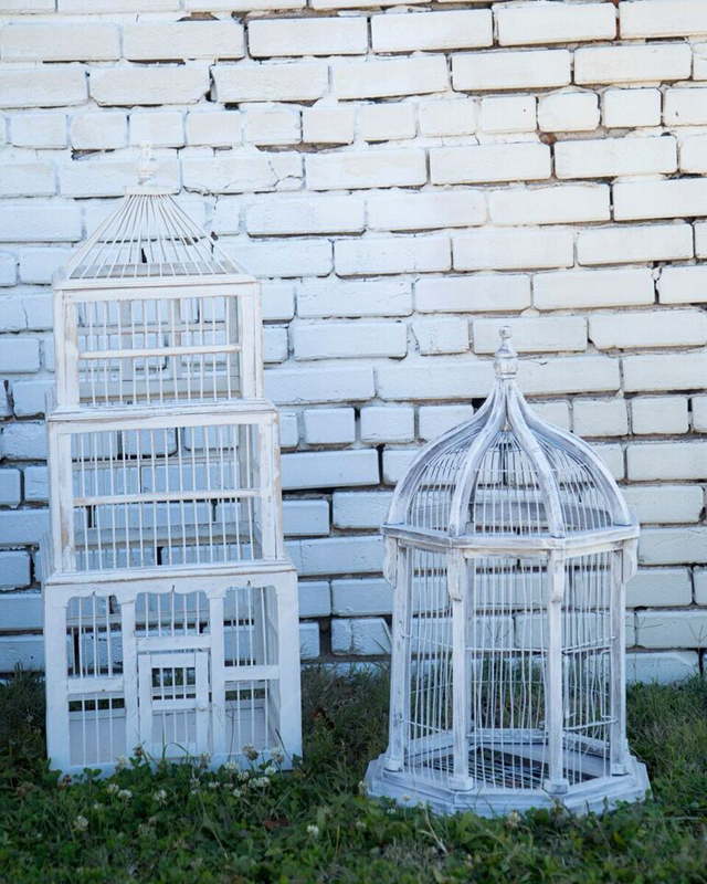 White Birdcages~Rental $15-20 each