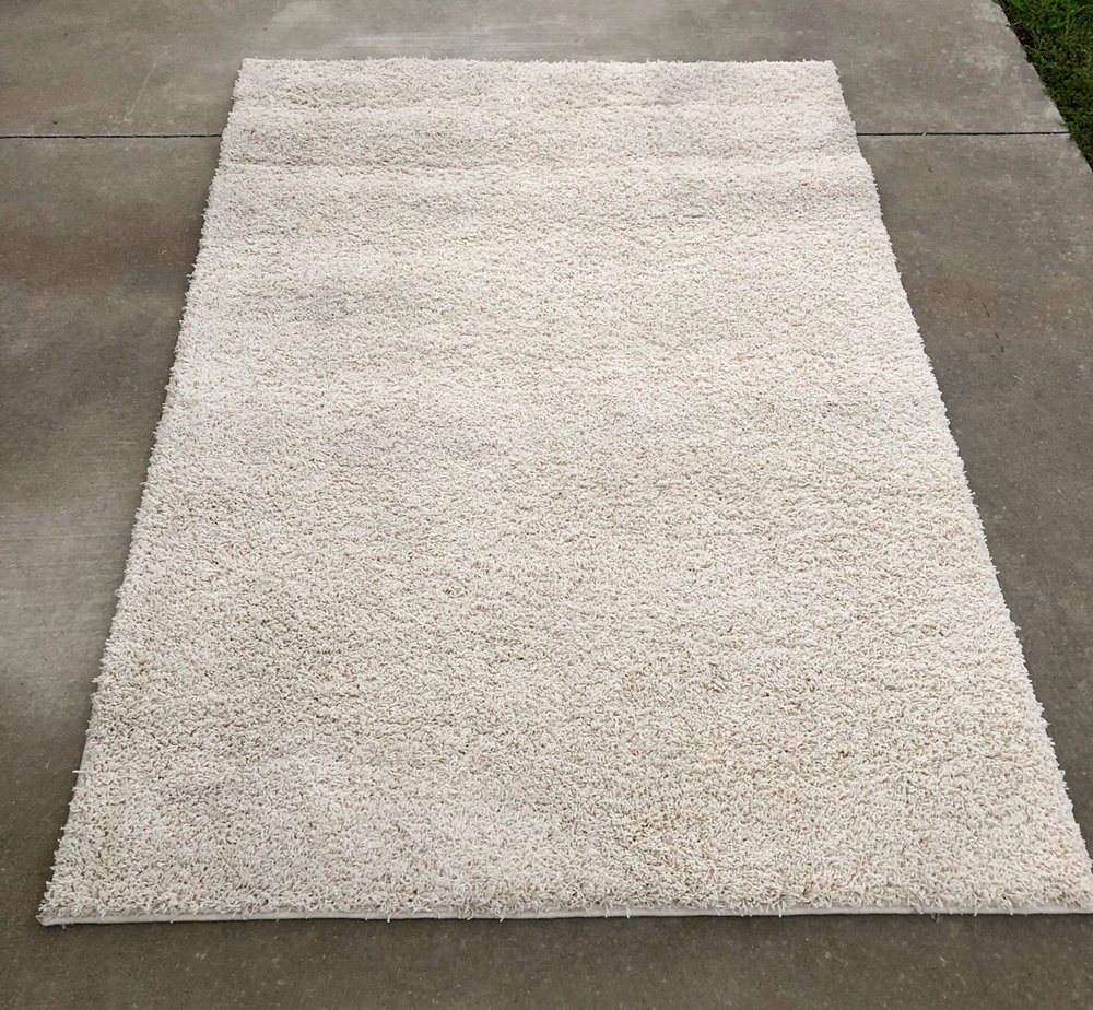 Cream Shag Rug~Rental $25