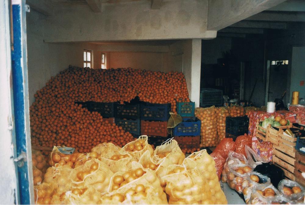 un monton de naranjas.jpeg