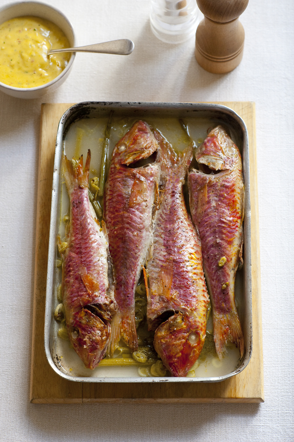Fish_RedMulletFennel_03.jpg
