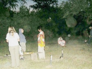 Count the Orbs at the Bumble Bee Retreat!