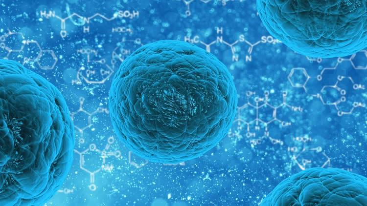 Stem cells : http://neurosciencenews.com/stem-cell-als-repair-6679/