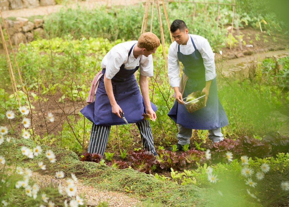 Gidleigh Park Kitchen Garden