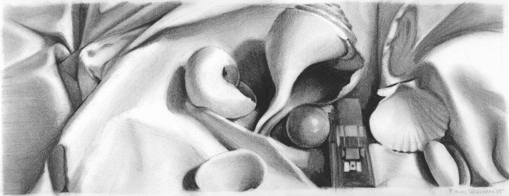 Patti King Slavtcheff_Black and White Illustration_Shells
