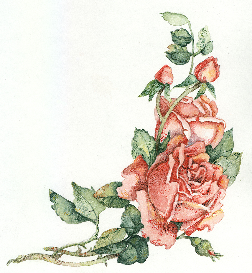 Patti King Slavtcheff_Floral_Victorian Rose
