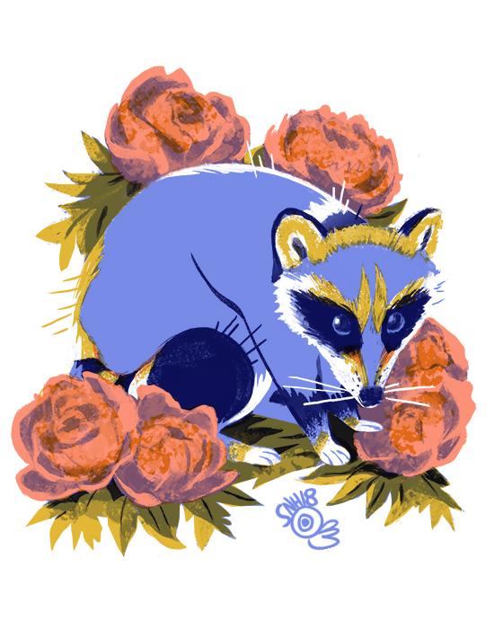 familiar_raccoon_lowres.jpg