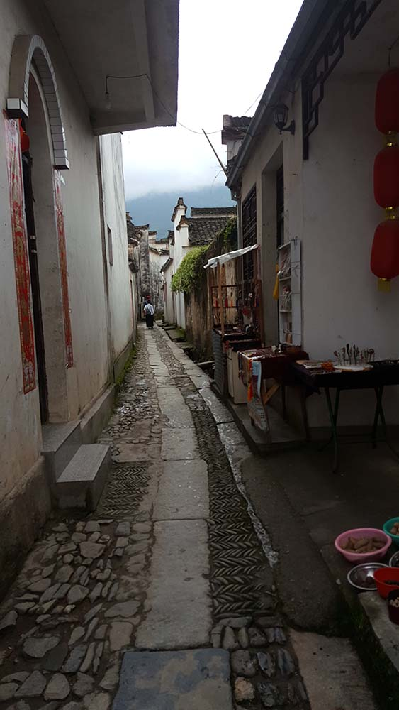 A narrow path in Xiping village.