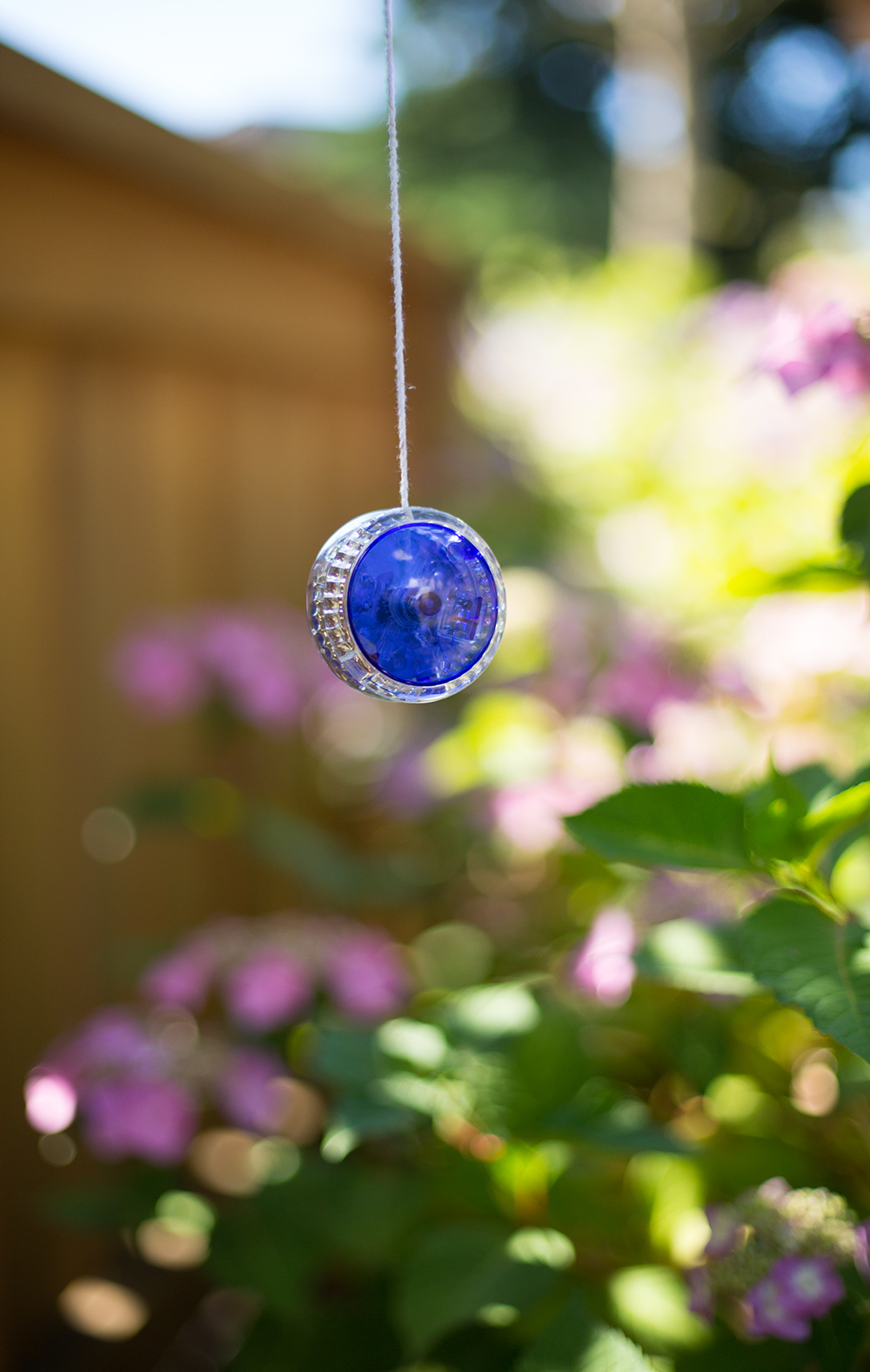 yoyo treasures from arcade hanging from tree
