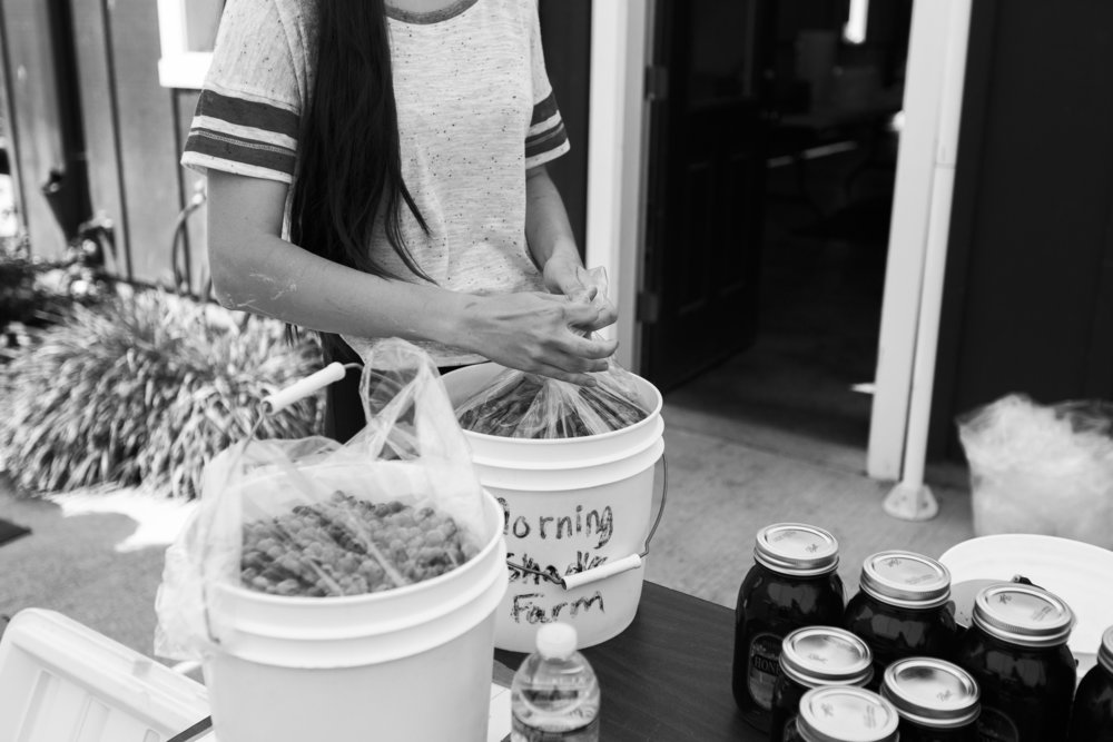 woman packing up buckets of blueberries at farm stand