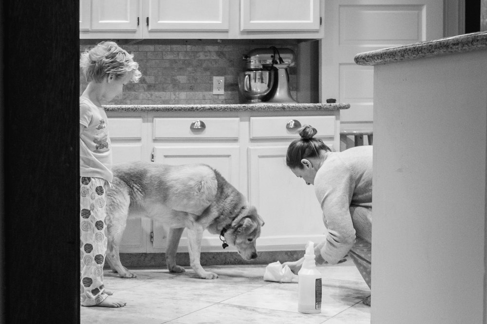 mom cleans up dog puke as son watches in kitchen