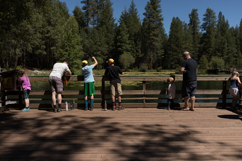 kids and dads stand on the deck above the holding pond to feed rainbow trout