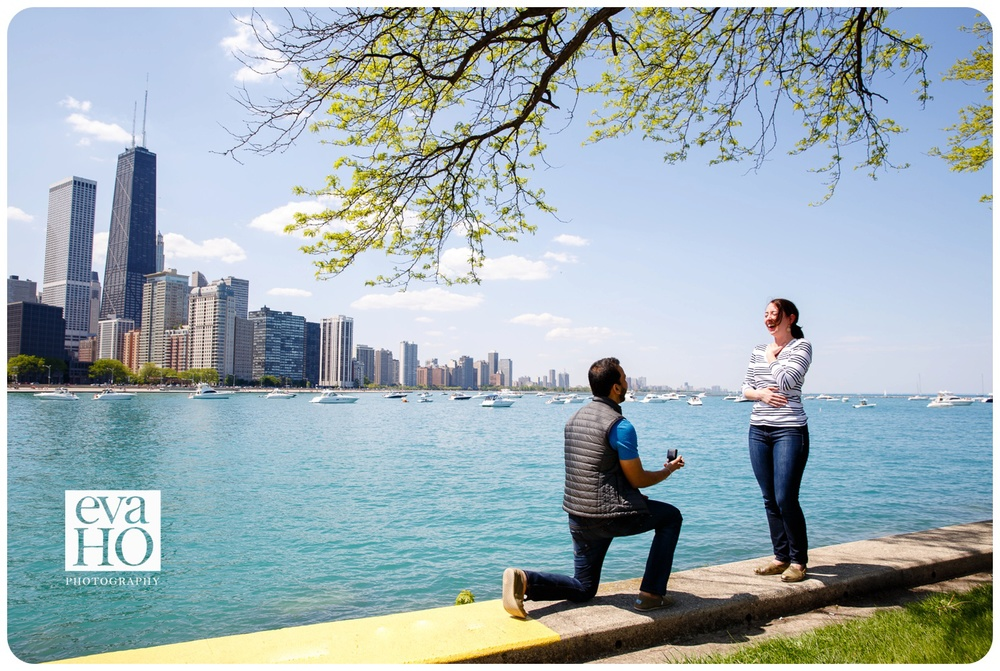 Surprised Proposal by Lake Michigan at Olive Park