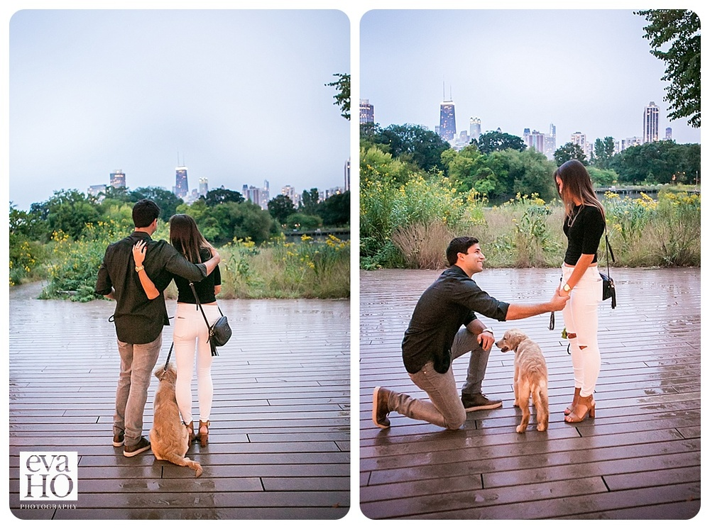Chicagoproposal-3