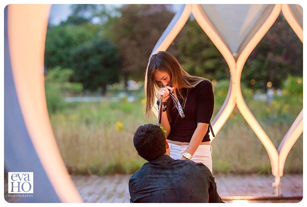 Chicagoproposal-14