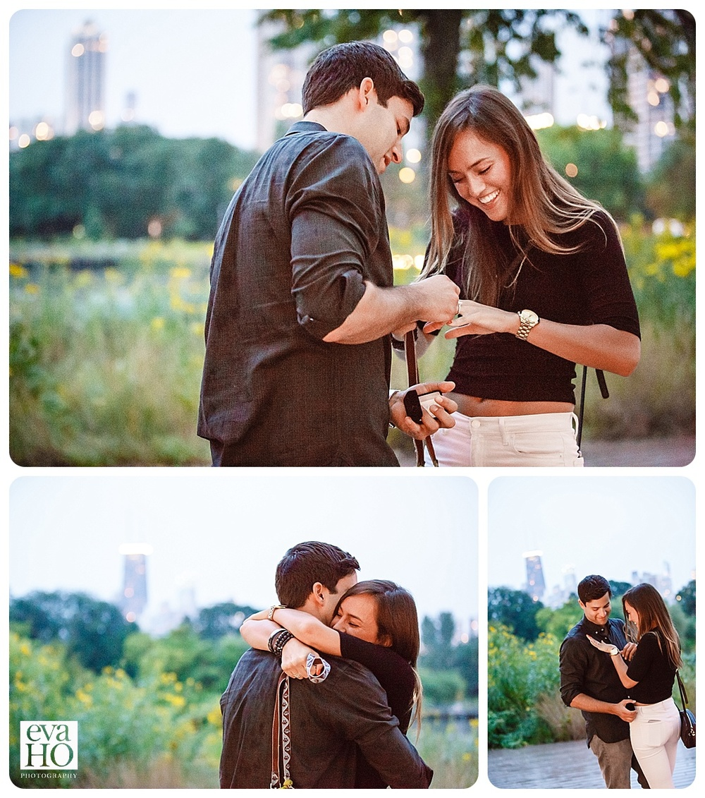 Chicagoproposal-16