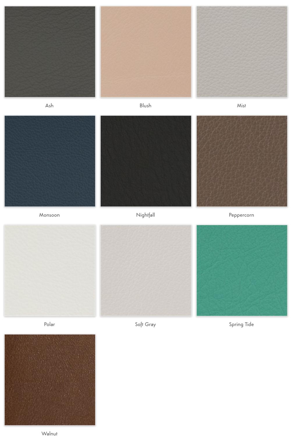 Standard_leather_Album_option.jpg