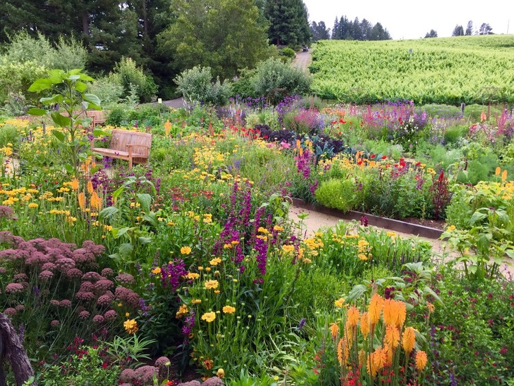 Bees + Bee-Friendly Gardens in California with Kate Frey + ... Native Bee Pollinator Garden Designs on native plant garden, native wildflower garden, native perennial garden, native bee habitat,