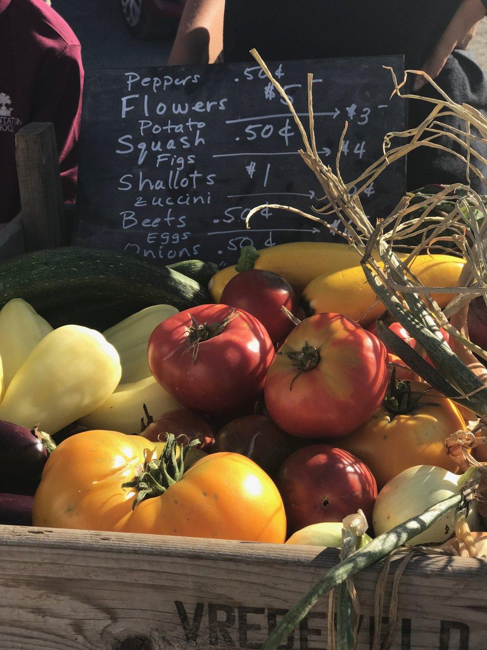 Sonoma Farmer's Market | 5th Street Farm | ChateauSonoma.com