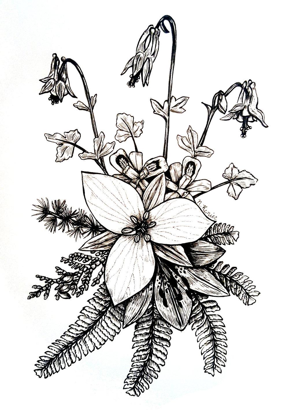 Woodland Species
