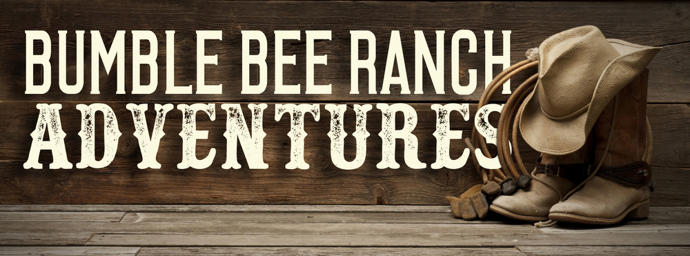 Bumble bee ranch az
