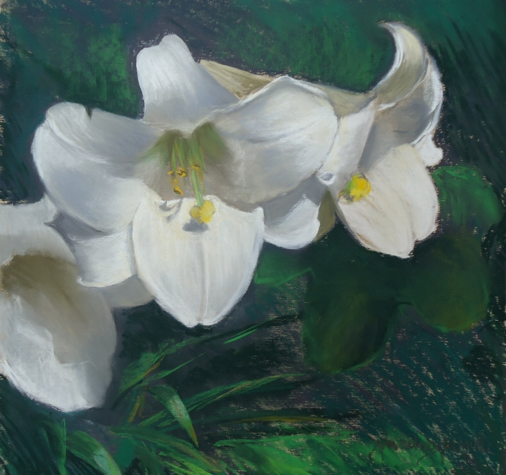 American Lillies - pastel on paper