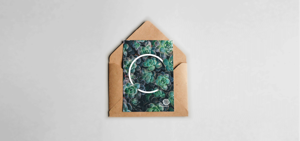 Succulent-Greeting-card.png
