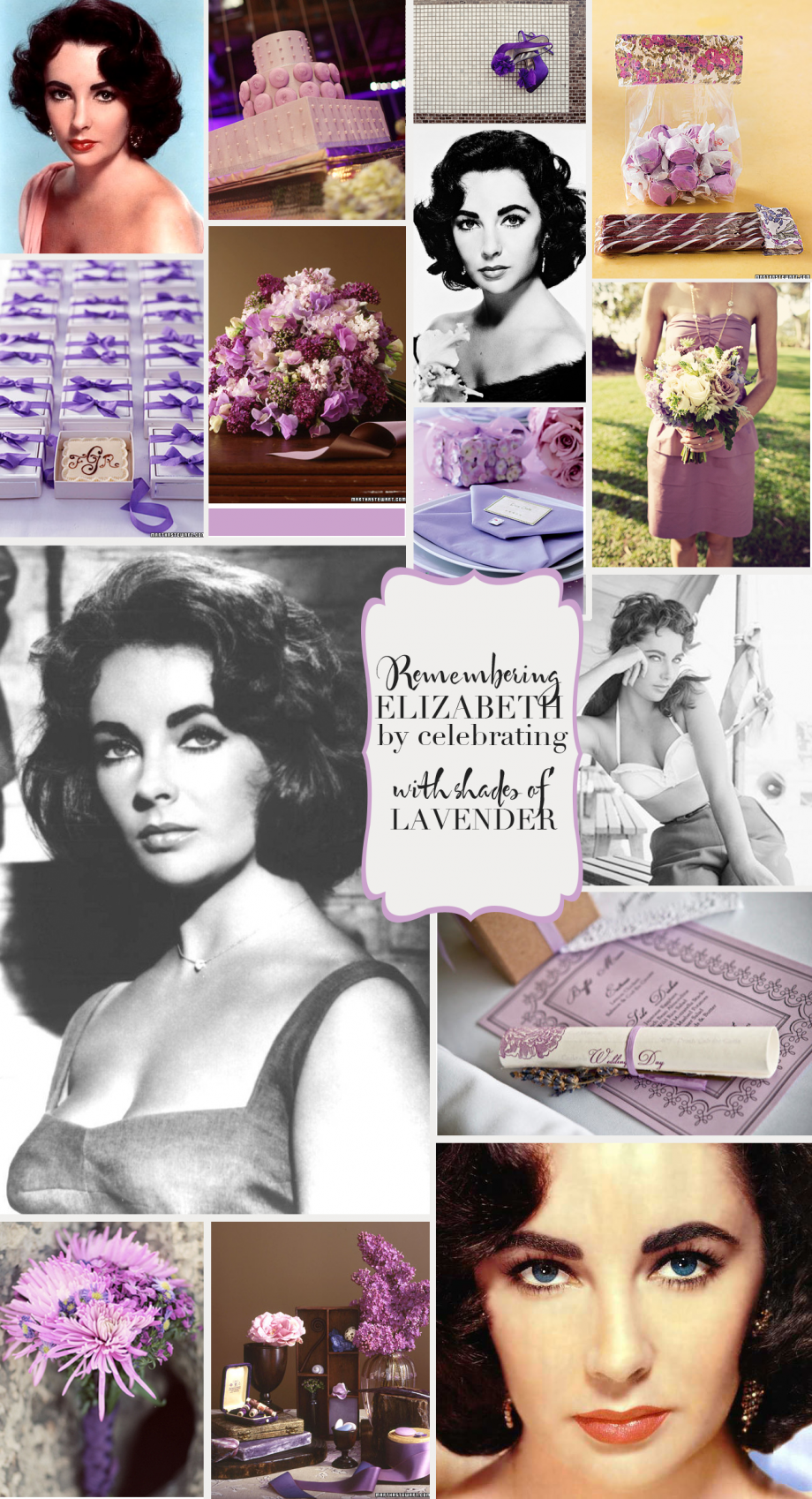 lavender-elizbeth-taylor11.png
