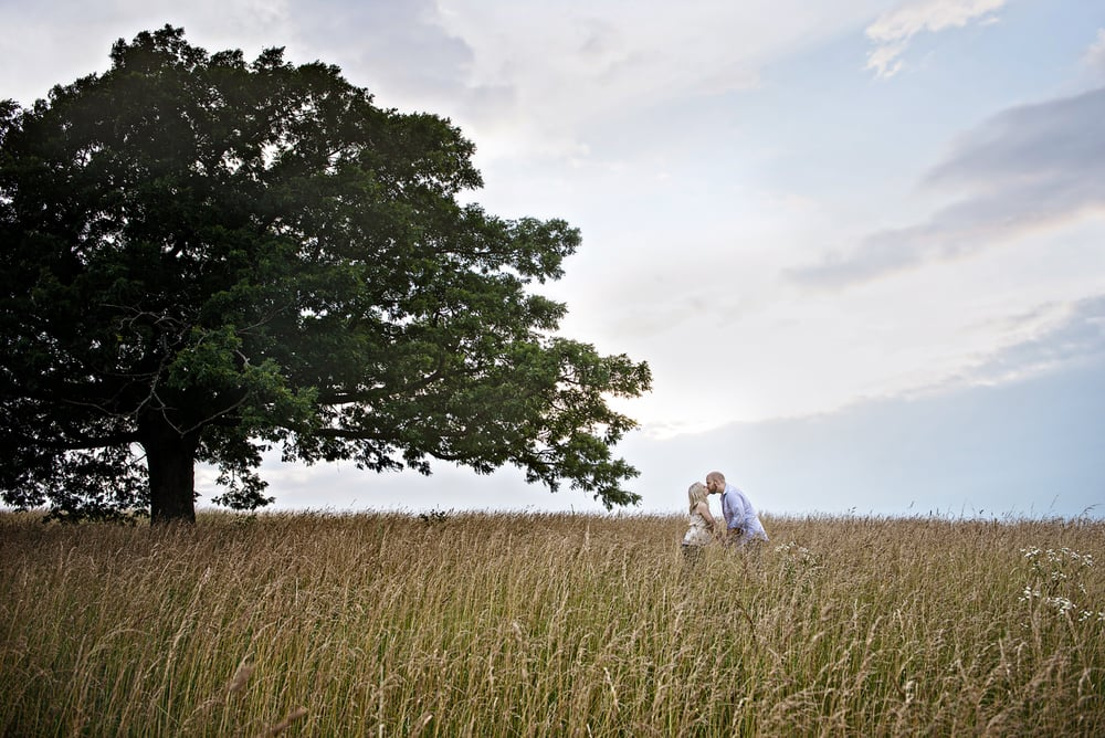 couple kissing in a deep grassy meadow near an old tree