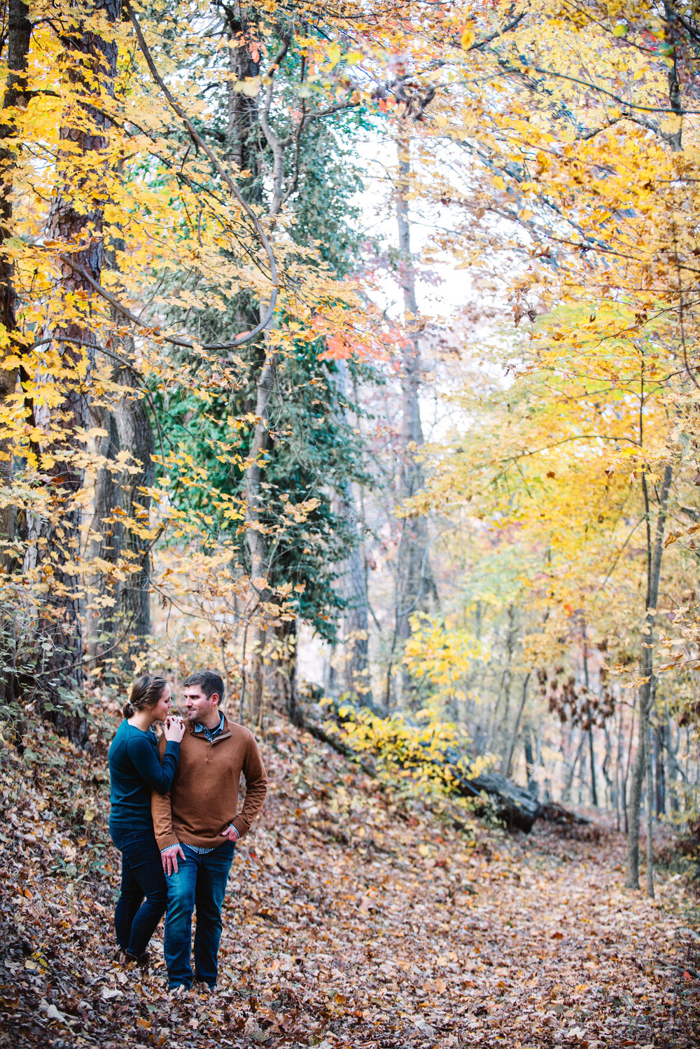Engagement couple in fall colored woods