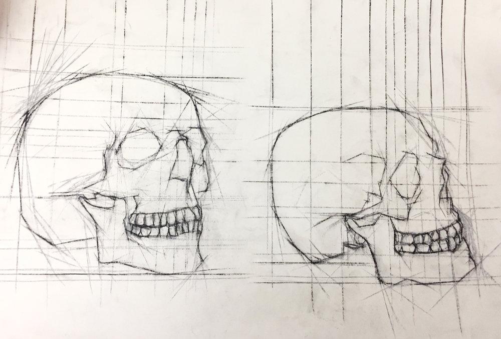 Skulls 3.jpg