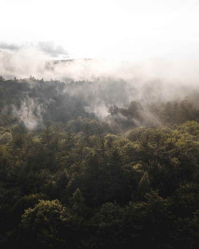 ...something about fog billowing through the hills gets me. Took this last summer up north with my boy Lenny (the drone) making sky things possible. Drones are pretty neat, and I am pretty nerdy. ⠀⠀⠀⠀⠀⠀⠀⠀⠀⠀⠀⠀⠀⠀⠀⠀⠀⠀⠀⠀⠀⠀⠀⠀⠀⠀⠀⠀⠀⠀⠀⠀⠀⠀⠀⠀⠀⠀⠀⠀⠀⠀ ⠀⠀⠀⠀⠀⠀⠀⠀⠀⠀⠀⠀⠀⠀⠀⠀⠀⠀⠀⠀⠀⠀⠀⠀⠀⠀⠀⠀⠀⠀⠀⠀⠀⠀⠀⠀⠀⠀⠀⠀⠀⠀ ⠀⠀⠀⠀⠀⠀⠀⠀⠀⠀⠀⠀⠀⠀⠀⠀⠀⠀⠀⠀⠀⠀⠀⠀⠀⠀⠀⠀⠀⠀⠀⠀⠀⠀⠀⠀⠀⠀⠀⠀⠀⠀#nakedplanet #depthsofearth #passionpassport #wildernessnation #stayandwander #lifeofadventure #artofvisuals #liveauthentic #agameoftones #portraitmood #beautifuldestinations #visualambassadors #lensbible #naturegramy #adventureisoutthere #mountainstones #wondermore #wildernesstones #exploreourearth #moodygrams #adventurethusiasts #roam #thevisualcollective #majestic_earth #planetdiscovery #traveldeeper #visitNH #livefreeNH #newhampshire_igers #scenicNH