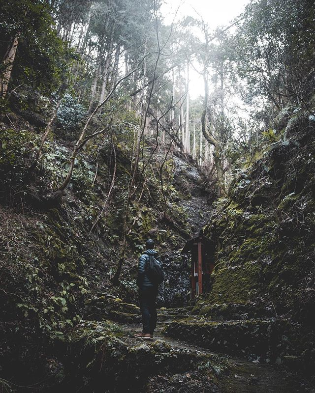 When tiny overgrown paths in the mountains lead to little shrines in beautiful spots. ⠀⠀⠀⠀⠀⠀⠀⠀⠀⠀⠀⠀⠀⠀⠀⠀⠀⠀⠀⠀⠀⠀⠀⠀⠀⠀⠀⠀⠀⠀⠀⠀⠀⠀⠀⠀⠀⠀⠀⠀⠀⠀ ⠀⠀⠀⠀⠀⠀⠀⠀⠀⠀⠀⠀⠀⠀⠀⠀⠀⠀⠀⠀⠀⠀⠀⠀⠀⠀⠀⠀⠀⠀⠀⠀⠀⠀⠀⠀⠀⠀⠀⠀⠀⠀ ⠀⠀⠀⠀⠀⠀⠀⠀⠀⠀⠀⠀⠀⠀⠀⠀⠀⠀⠀⠀⠀⠀⠀⠀⠀⠀⠀⠀⠀⠀⠀⠀⠀⠀⠀⠀⠀⠀⠀⠀⠀⠀#nakedplanet #depthsofearth #passionpassport #wildernessnation #stayandwander #lifeofadventure #artofvisuals #liveauthentic #agameoftones #portraitmood #beautifuldestinations #visualambassadors #lensbible #naturegramy #adventureisoutthere #mountainstones #wondermore #wildernesstones #exploreourearth #moodygrams #adventurethusiasts #roam #thevisualcollective #majestic_earth #planetdiscovery #traveldeeper