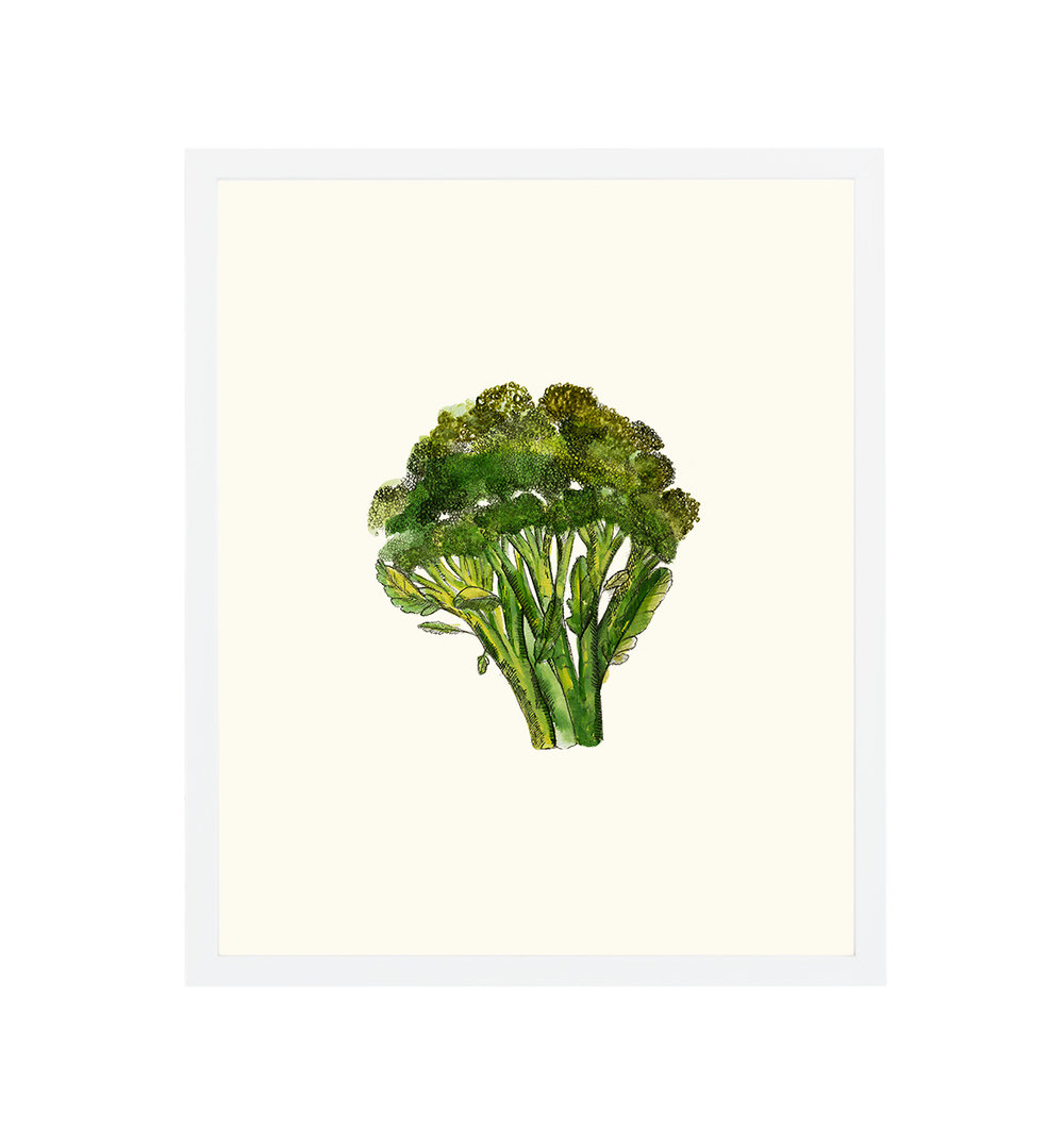 white-framed-broccoli.jpg