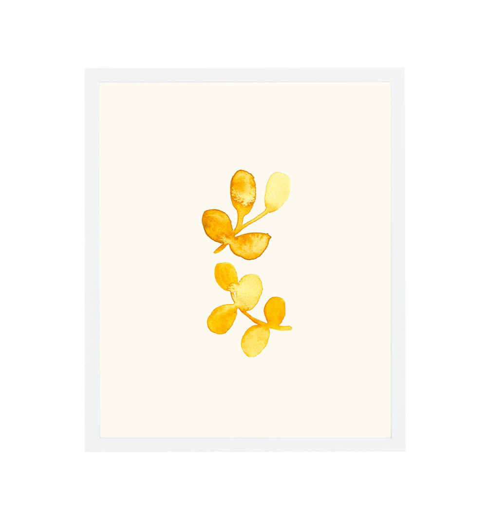 white-framed-minimal-yellow-watercolor.jpg