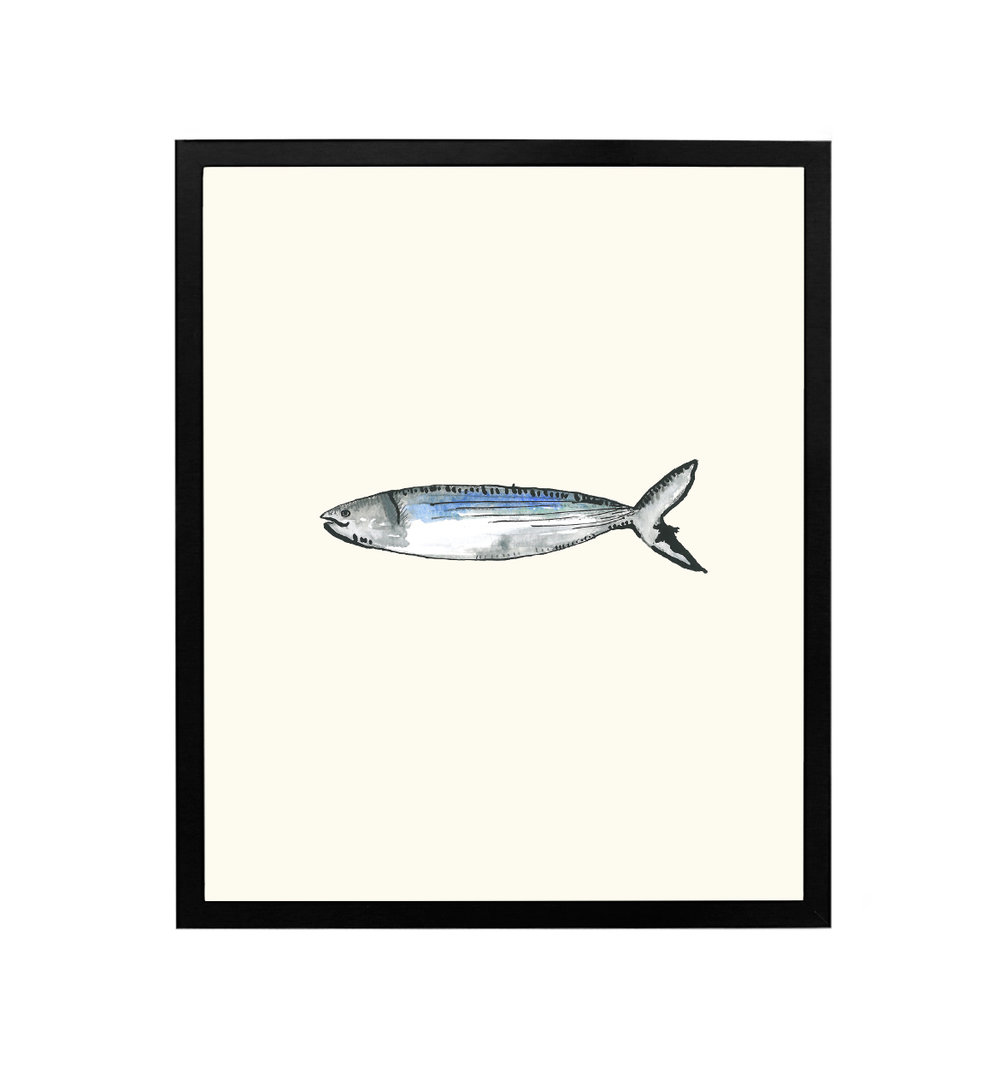 black-framed-fish.jpg