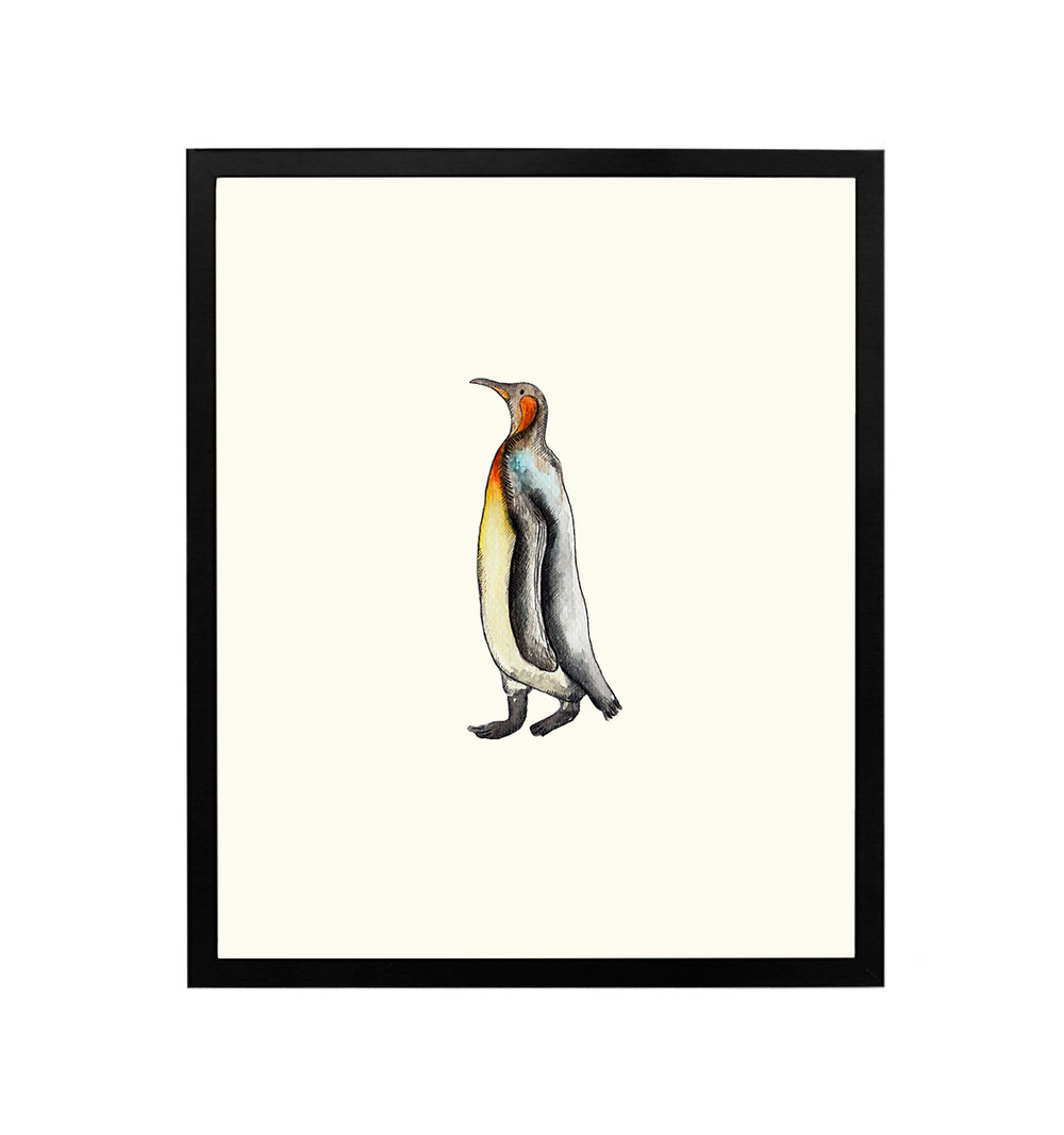 black-framed-penguin.jpg