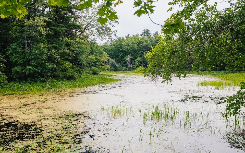 runaround pond