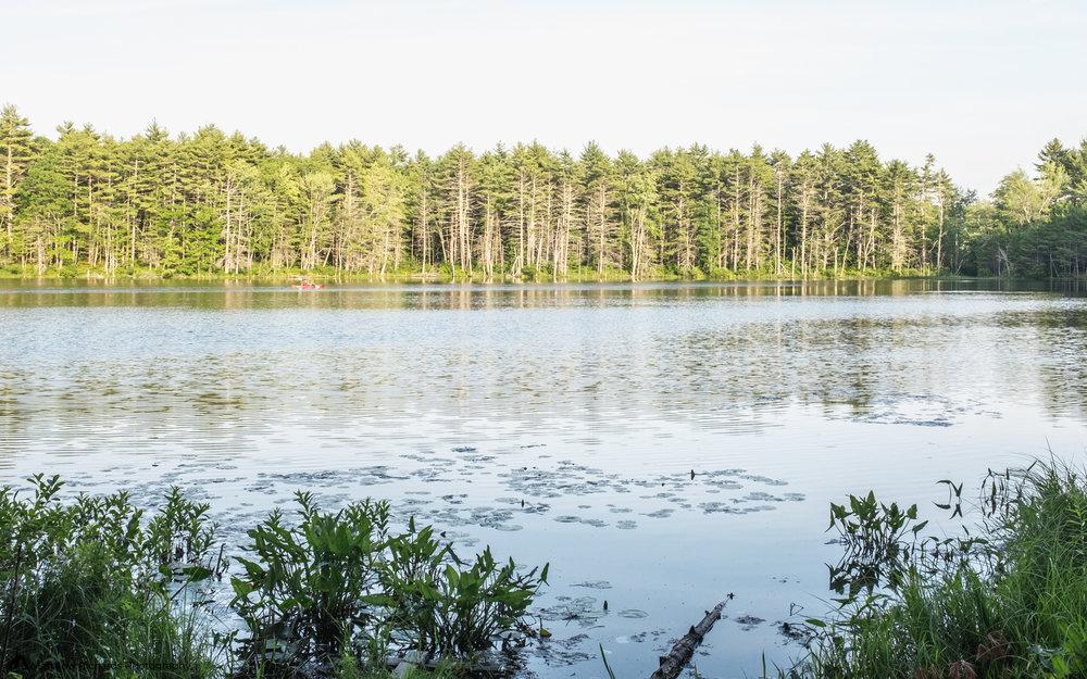 Chaffin Pond