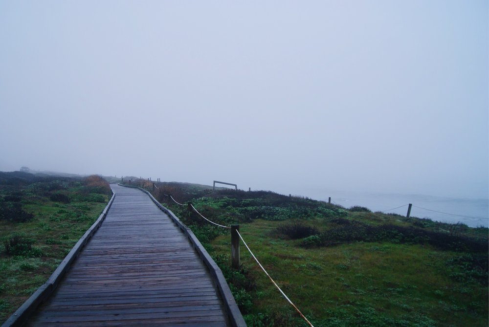 Beach boardwalk above Moonstone beach