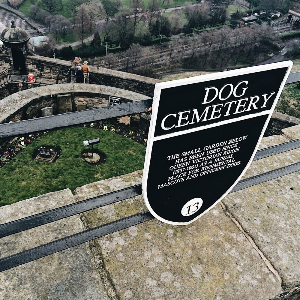 Dog cemetery found within the castle walls